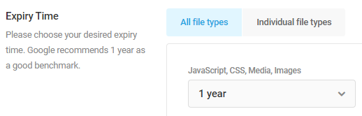 set cache expiry to 1 year