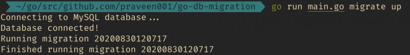 running db migrations in go